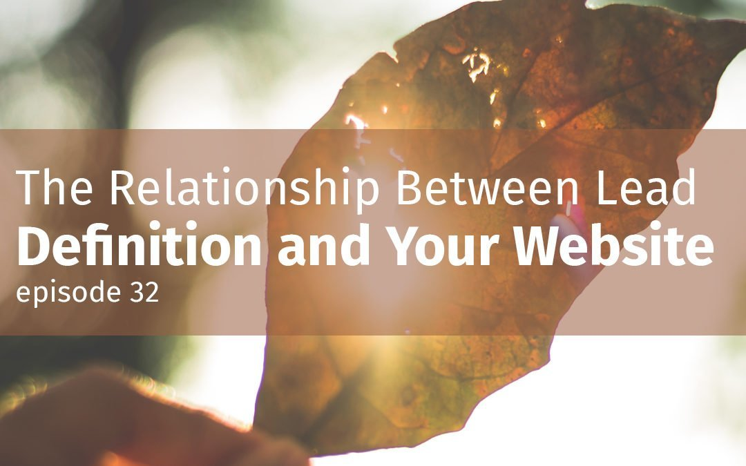 Episode 32 The Relationship Between Lead Definition and Your Website