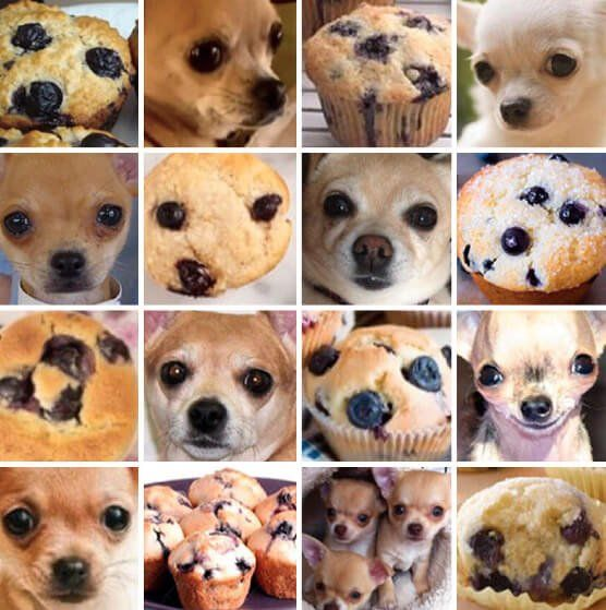 Machine Learning Images